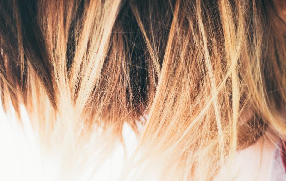 Fuller Thicker Hair
